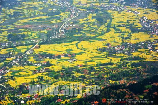 中国最美油菜花海汉中赏花旅游攻略