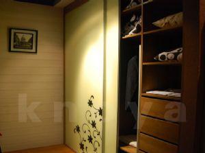 卡喏亚整体衣柜