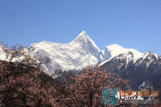 新浪旅游配图:雪山 摄影:北京老夏
