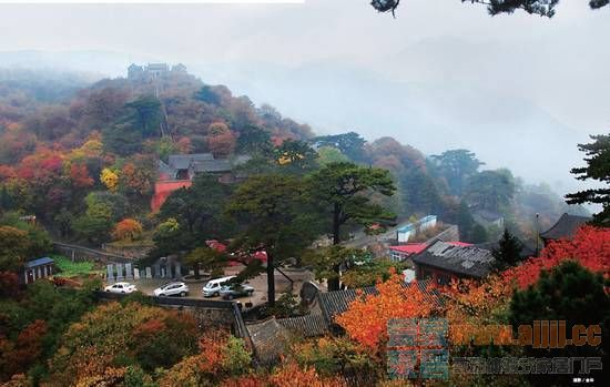 新浪旅游配图:妙峰山秋景 摄影:金华